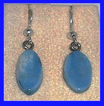 Simple Rare Blue Fossil IvoryPaleo IndianEarringsFossil Walrus Ivory$26.50