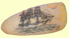 "Gallery DisplayDowneaster""Hotspur"" Scrimshaw Sperm Whales Tooth"