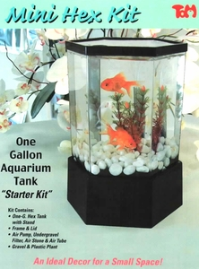 50% OFF of Mini Hex Aquarium Kit by Tom
