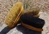 "8 1/4"" Curved Back Style Soft Body and Finishing Brushes with Natural Fibers by Desert Equestrian"