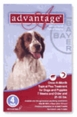 Advantage for Dogs 21-55 lbs 4 Month Supply RED