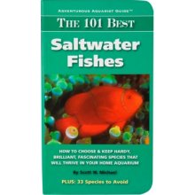 Adventurous Aquarist Guide 101 Best Saltwater Fishes