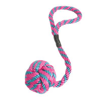 Aspen Booda Wing-A-Ball Dog Toy- Small