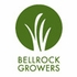 Bell Rock Growers
