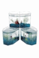 Betta Houses and Aquariums