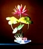 """FLOWERING Water Lilly 10"""" - 3 Colors to choose from !!!"""