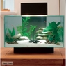 Hagen Fluval Edge Foam and Biomax Renewal KIT