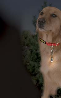 Max� Saf-T Blinker� Night Or Day Easily Attaches To Collar