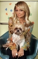 Nicole Richie poses with her Shih tzu Honeychild.