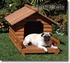 Outback Mountain View Dog House
