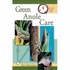 Quick and Easy Guinea Anole Care