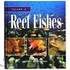 Reef Fishes Volume 1 by Scott W Michael