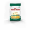 Royal Canin Mini Breed Poodle (30) 3 Lb Bag