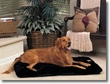 The SnooZZy Cozy Comforter Designer Series in Luxurious Black Fabric