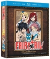 Fairy Tail DVD/Blu-ray Collection 1