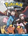 Pokemon: Black and White GN 4