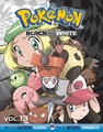 Pokemon Black and White Graphic Novel 13