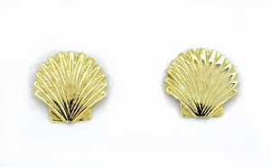 Sea Shell Stud Earrings in 14 Karat Gold