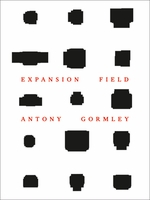 Antony Gormley: Expansion Field