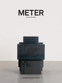 Antony Gormley: Meter
