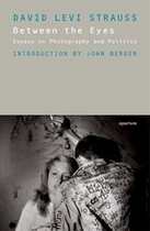 Between the Eyes: Essays On Photography And Politics