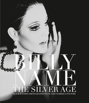 Billy Name: The Silver Age