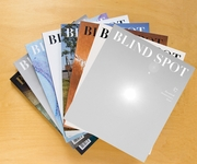 Blind Spot: Issue 49