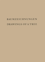 David Rabinowitch: Drawings Of A Tree