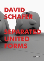 David Schafer: Separated United Forms