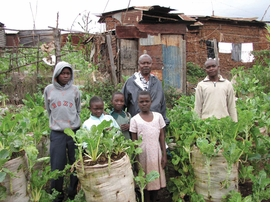 """Featured image, of Solidarit�s International's Garden-in-a-sack program, is reproduced from <a href=""""http://www.artbook.com/9780910503839.html"""">Design with the Other 90%: Cities</a>."""