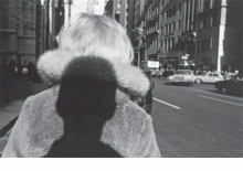 Double Elephant 1973�74: Manuel �lvarez Bravo, Walker Evans, Lee Friedlander, Garry Winogrand