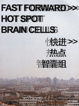 Fast Forward Hot Spots Brain Cells