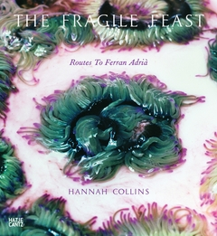 Hannah Collins: The Fragile Feast, Routes to Ferran Adri�