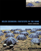 Helen Escobedo: Steps On The Sand