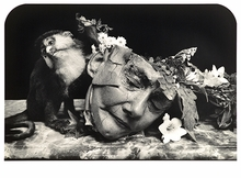 Jerome Witkin & Joel-Peter Witkin: Twin Visions
