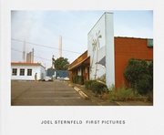 Joel Sternfeld: First Pictures