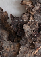 John Cage Book of Days 2012