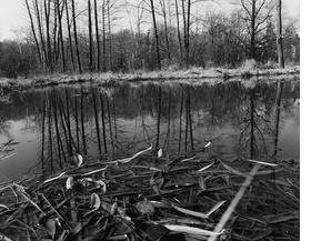 """Featured image is from <a href=""""9781597111324.html"""">John Gossage: The Pond</a>."""