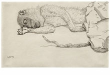 Lucian Freud Drawings