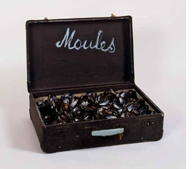 "Featured image, <I>Valise ""Moules""</I> (1965), is reproduced from <I>Marcel Broodthaers</I>."