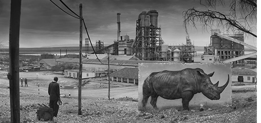 Nick Brandt: Inherit the Dust, Factory with Rhino