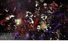 Ori Gersht: History Repeating