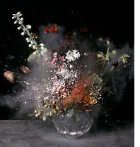 Ori Gersht: History Repeating Reviewed in The New York Times