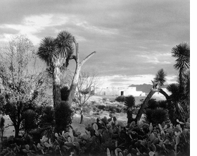 """Featured image is from <a href=""""9781597111379.html"""">Paul Strand in Mexico</a>, published by Aperture and Fundaci�n Televisa."""