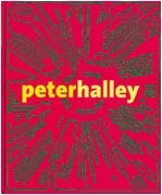 Peter Halley: Maintain Speed