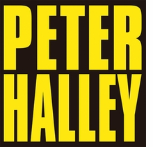 Peter Halley: Since 2000