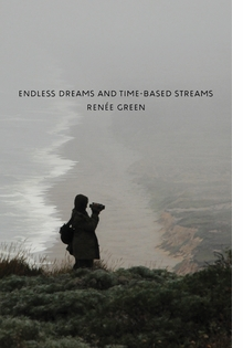 Ren�e Green: Endless Dreams and Time-Based Streams