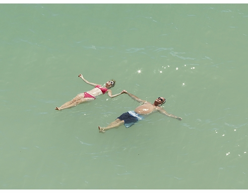 Beach Seeing: Richard Misrach's Mysterious Opacity of Other Beings