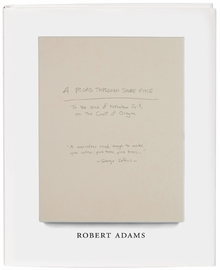Robert Adams: A Road Through Shore Pine