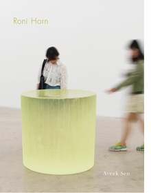 Roni Horn: The Sensation of Sadness at Having Slept Through a Shower of Meteors